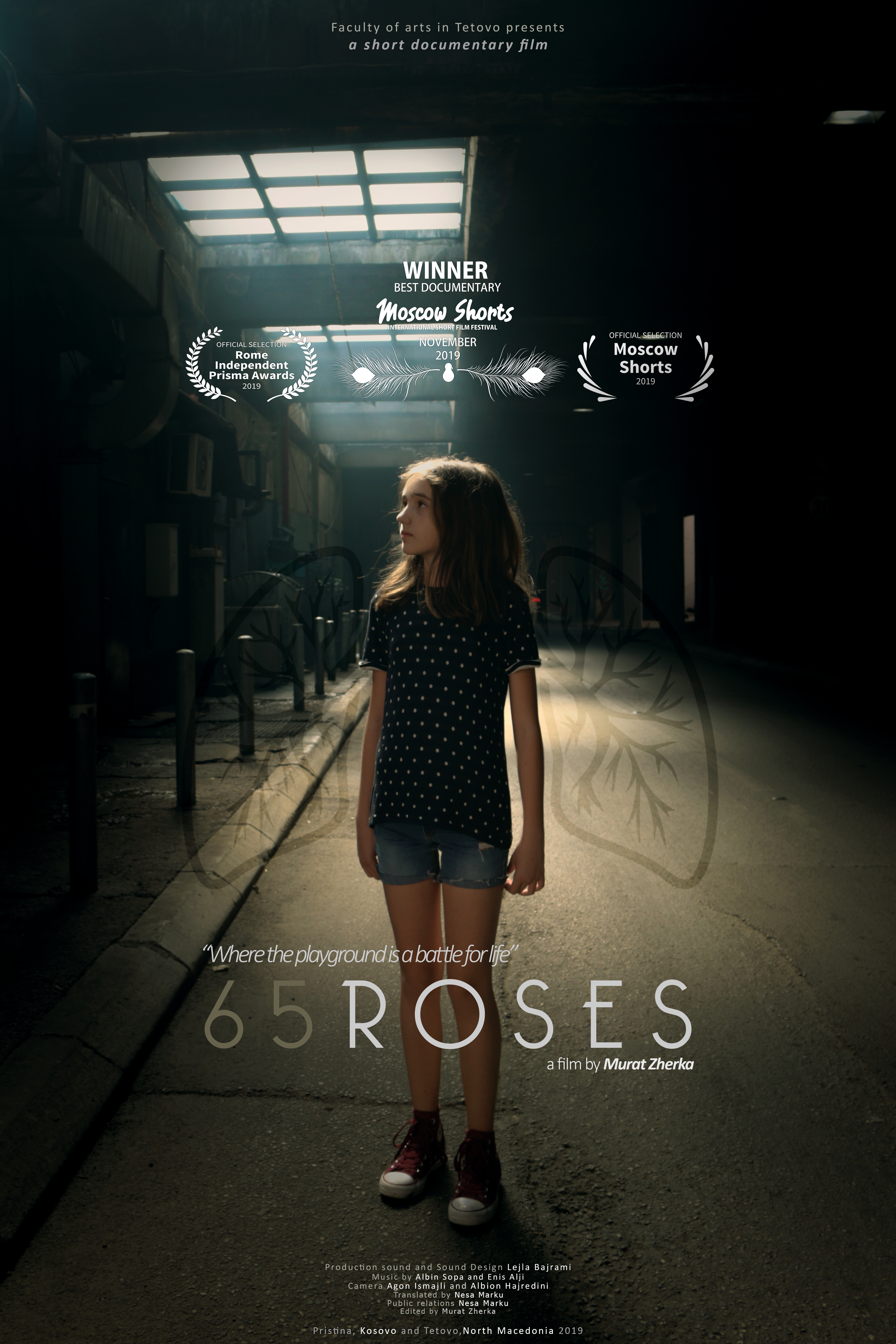65 roses poster