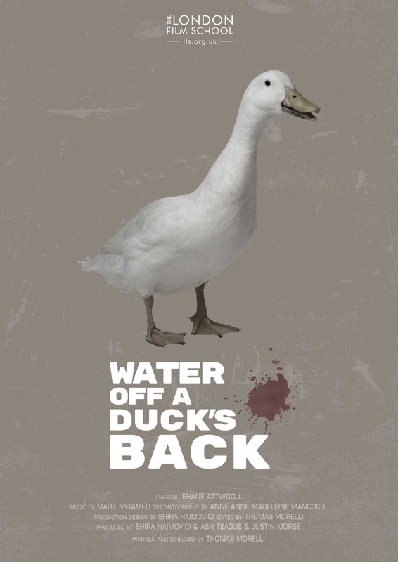 poster Water Off a Duck_s Back